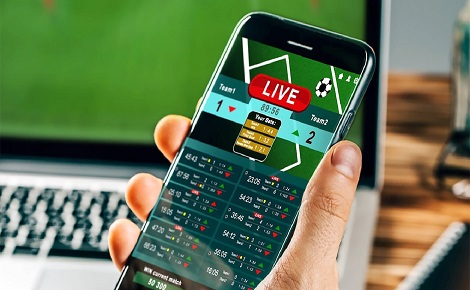 Sport-betting-Synergy